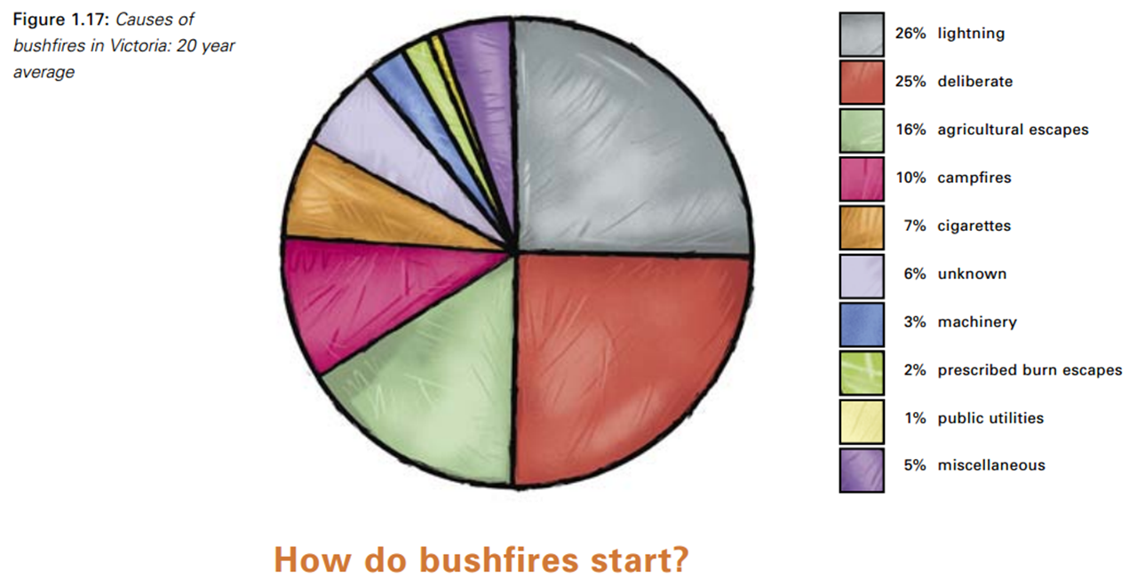 causes of bushfires Why do bushfires occur there are a number of differernt reasons a bushfire happens, most causes are from human activity rather than a natural cause.